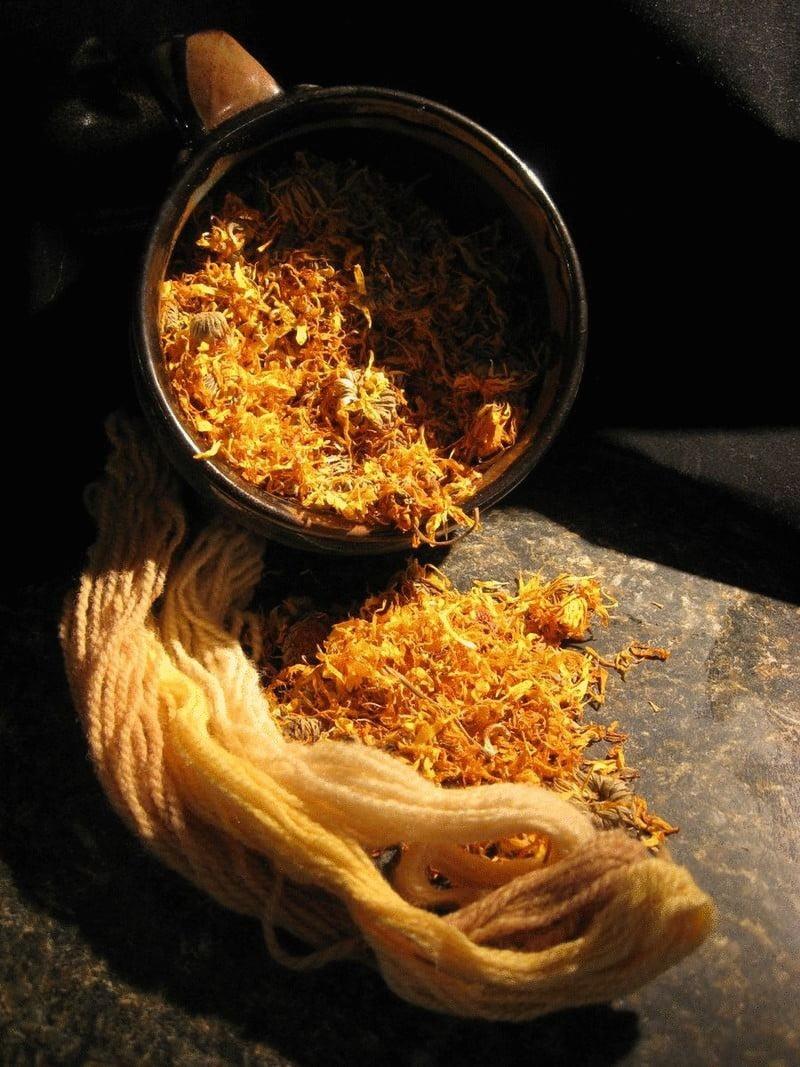 content medicinal teas based on calendula econet ru